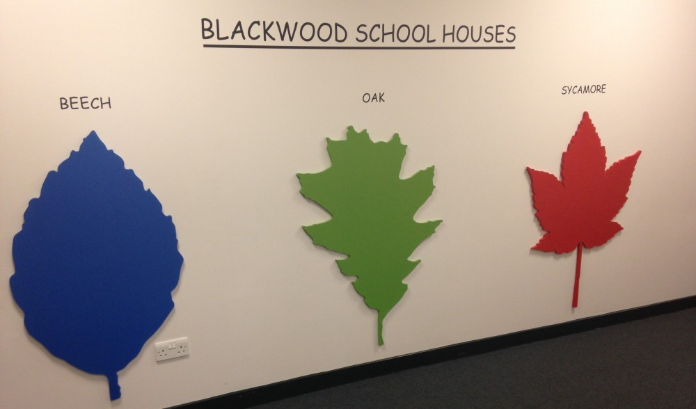 Blackwood Primary School